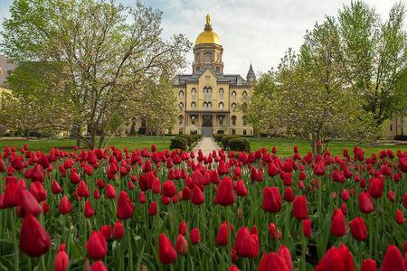 Main Building Of Notre Dame In The Spring